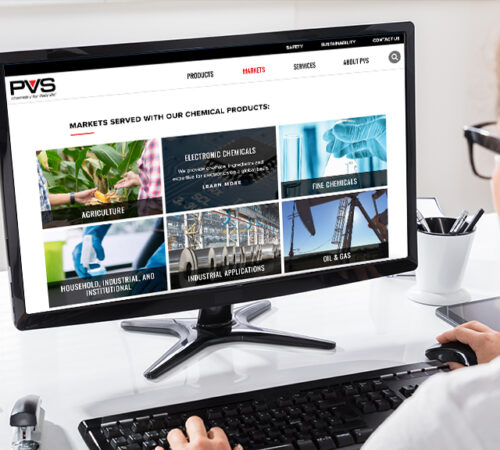PVS Website Development